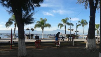 Exercise on malecon