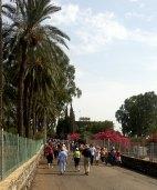 Walking towards Sea of Galilee