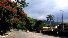 La Floresta, Jalisco, Ajijic