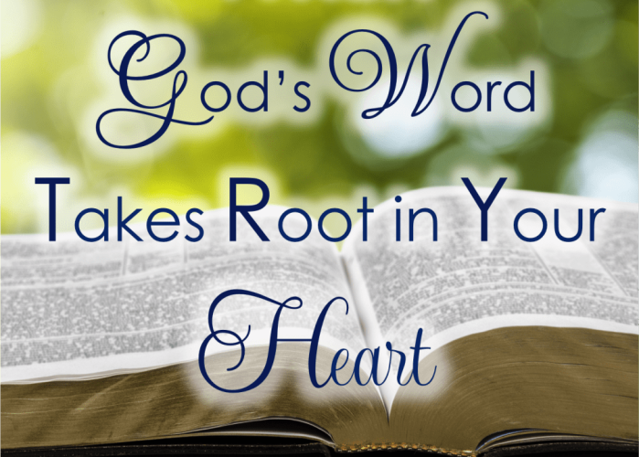 When-Gods-Word-Takes-Root-In-Your-Heart-Square-Featured-1005x1024
